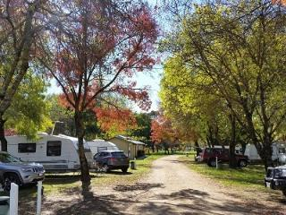 Perfect Caravan/mobile home with Internet Access and Mountain Views - Whitfield vacation rentals