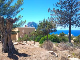 Exclusive Ibiza Villa with oceanview and sunset - Cala Carbo vacation rentals