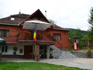7 bedroom Guest house with Internet Access in Teius - Teius vacation rentals