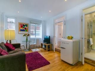 Perfect1BR serviced flat Sloane Ave Chelsea zone 1 - London vacation rentals