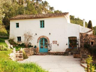 S.XVIII Vineyard Farm House near Sitges - Sant Pere de Ribes vacation rentals