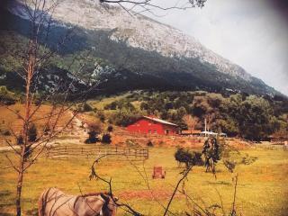Vacanze in montagna nel Parco d'Abruzzo - Opi vacation rentals