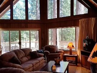 Relax in this classic Chalet style cabin walking distance from Fly-In Lake! - Arnold vacation rentals