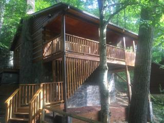 TreeTops - Sevierville vacation rentals