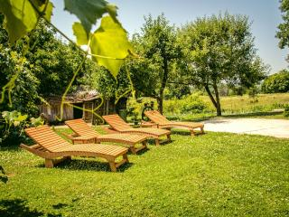 Modern Apt near Plitvice and Rastoke Waterfalls - Plitvice Lakes National Park vacation rentals