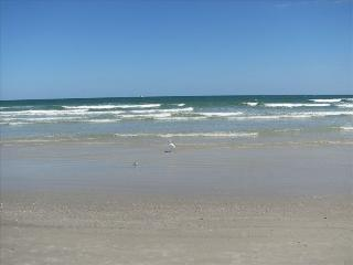 Barefoot Oceanview Heated Pool Cozy Beach Cottage - Saint Augustine Beach vacation rentals
