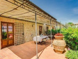 Mercurio Pesa Estate - Tavarnelle Val di Pesa vacation rentals