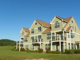 Vacation Condo close to Club House at Owl`s Nest Golf Resort - Campton vacation rentals