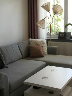 Charming apartament with lovely balcony - Malmö vacation rentals
