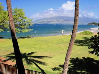 Cozy Condo with Private Outdoor Pool and DVD Player - Kihei vacation rentals
