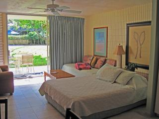 Beautiful Napili Shores Condo Inquire for Specials - Napili-Honokowai vacation rentals
