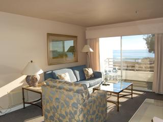 Heated pool, complimentary bikes, walk to Harbor - Capistrano Beach vacation rentals