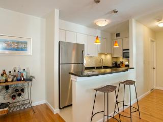 Comfortable Condo with Internet Access and Parking - Boston vacation rentals