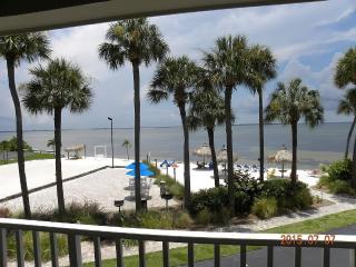 Beachfront Beautiful Modern Suite 217 - Tampa vacation rentals