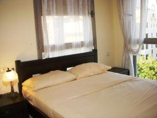 2 bedroom + balcony - st arlozorov 28 tel aviv - Tel Aviv vacation rentals