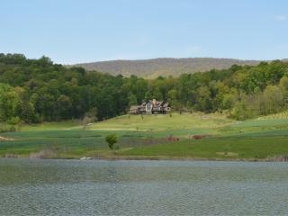 Maren Estate (Mountain Estate 20 min to UVA) - Afton vacation rentals