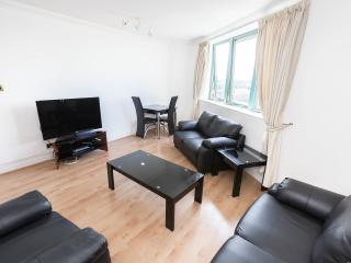 Serviced Flat with Pool and Sauna - London vacation rentals