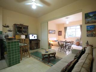 Comfortable Apartment with Internet Access and A/C - Rio de Janeiro vacation rentals