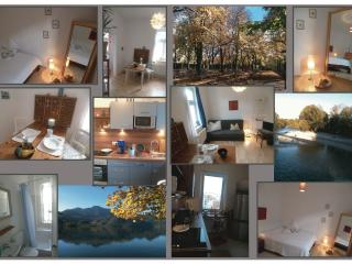 Central, cozy, calm - best value for visit Munich - Munich vacation rentals