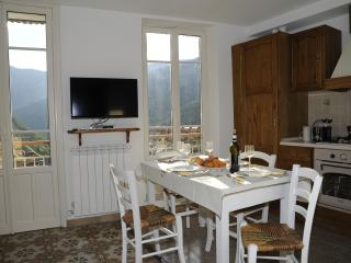 Cozy flat in the medieval heart of Pigna - Pigna vacation rentals