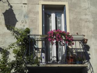 la maison des chats - Saint-Thibery vacation rentals