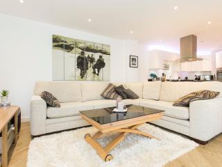 Beautiful Balham Apartment - London vacation rentals