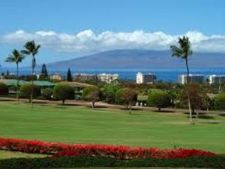 Oceanview Condo! Stay 5 nights get 6th Night FREE!!! - Lahaina vacation rentals