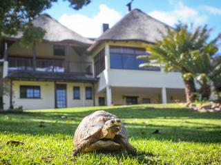 Winelands Villa Guesthouse and Cottages - Somerset West vacation rentals