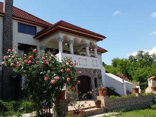 Beautiful villa in an astonishing countryside view - Ramnicu Valcea vacation rentals