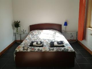 1 room apartment with kitchenette - Eindhoven vacation rentals