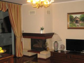 Comfortable duplex apartment with fantastic view - Ramnicu Valcea vacation rentals