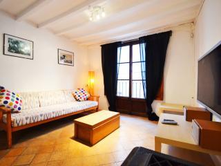 Apartment in Palma de Mallorca, 102371 - Palma de Mallorca vacation rentals