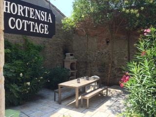 Charming 3 bedroom Cottage in Siran with Internet Access - Siran vacation rentals