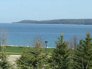 Petoskey Condominium with views of the Bay - Petoskey vacation rentals