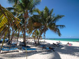 Corales Colonial 1,Beautiful/Central/Private Beach - Bavaro vacation rentals