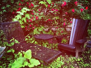 Historic Sugar Hill Bookish Garden Apartment - New York City vacation rentals