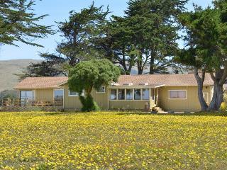 Seaside Escape - Bodega Bay vacation rentals