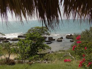 Sea View /Beach Apt  1 AC BD - kitchen- patio - - Treasure Beach vacation rentals
