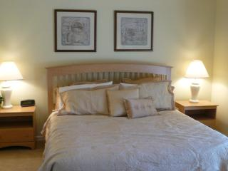 Four Corners/CF3874 - Davenport vacation rentals