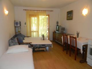 Cozy Studio with Internet Access and Parking Space - Stari Grad vacation rentals