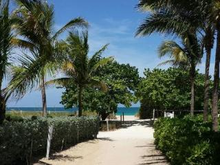 Great house on Miami Beach!!! - Miami Beach vacation rentals