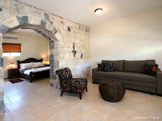 Spa Tavor mountain view near Kinneret Tiberias - Kfar Tavor vacation rentals