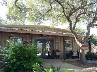 Ollie's Country Cottage - New Braunfels vacation rentals