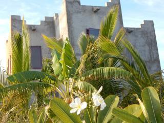 Casa Solariega Ocean View Suites - Todos Santos vacation rentals