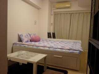 H2O Akihabara apartment hostel - Tokyo vacation rentals