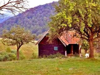 Cozy Cabin with Mountain Views and Patio - Vale vacation rentals