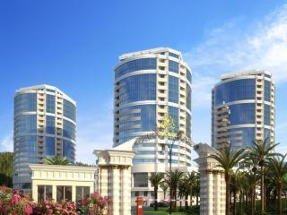 Convenient 1 bedroom Vacation Rental in Adler District - Adler District vacation rentals