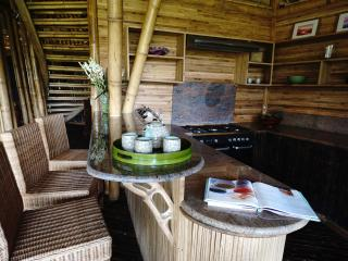 Incredible All Bamboo Home on Ayung River edge - Abiansemal vacation rentals