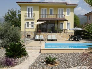 Gorgeous Villa with Internet Access and A/C - Koycegiz vacation rentals