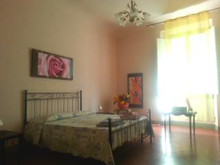 Spacious apartment in the real city centre - Florence vacation rentals